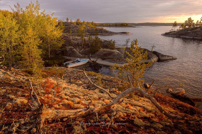 пейзаж,природа,путешествия,ладога,россия,утро,рассвет Очарование Ладогиphoto preview