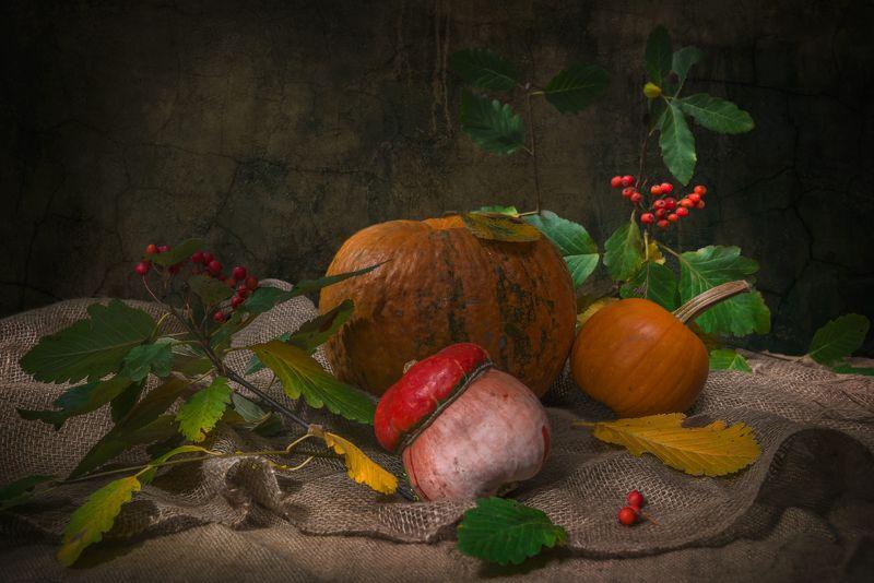 тыквы,рябина,натюрморт,осень Незадолго до осениphoto preview