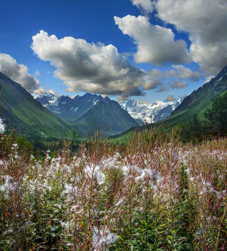 горы,осень,облака, иван-чай,пейзаж Из чего делают облакаphoto preview