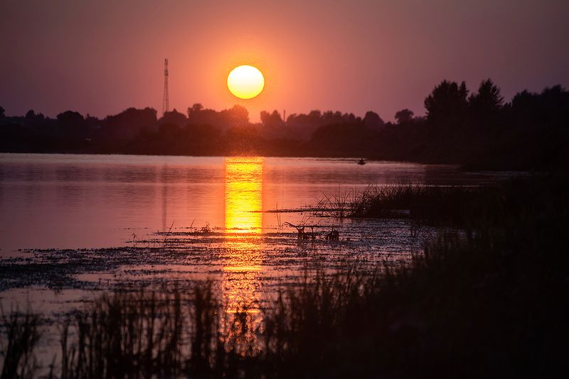 река, закат, лето, ока, мещёра, рязанская область Красочный закат на Оке-рекеphoto preview