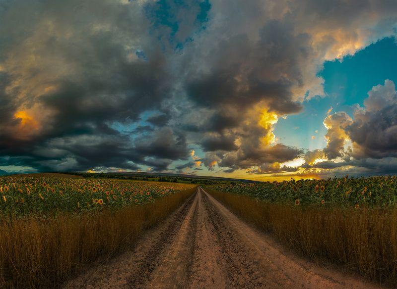 ceclii, nikon d3400, landscape Sunsetphoto preview