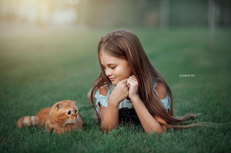 портрет, лето, девочка, girl, summer, кошка, кот, cat, улыбка, друг, животные, друзья, радость, игра, веселье, счастье, happy, happiness, знакомство Новый другphoto preview