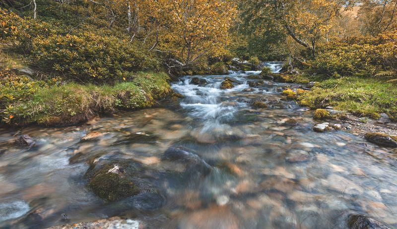река, м.дукка, архыз СКОРО ОСЕНЬphoto preview