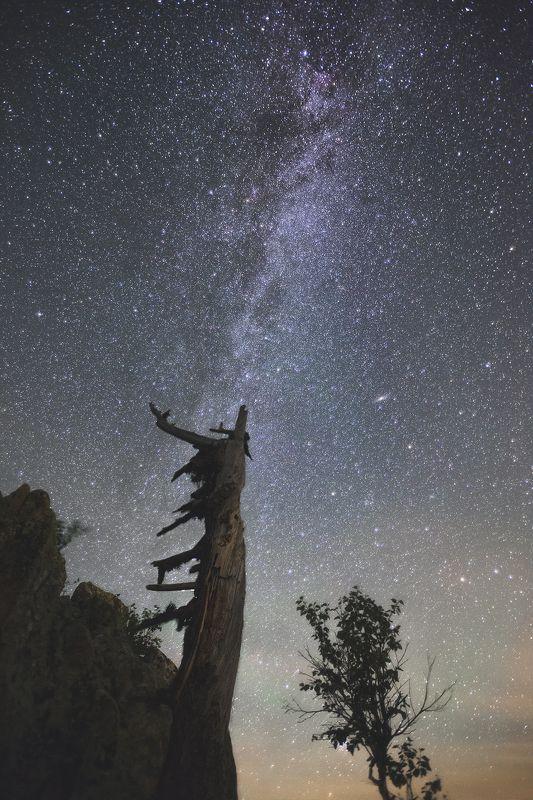 Таганай, Урал, Южный Урал, Млечный путь, Андромеда, Млечный путь, ночной пейзаж, звезды, звёзды, галактика Звёздный компасphoto preview