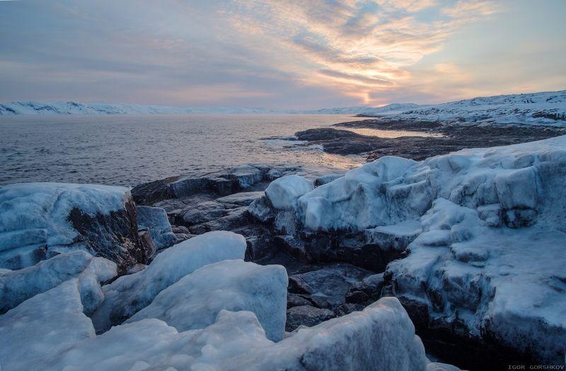 баренцево море,териберка,утро,зима,крайний север,заполярный круг,пейзаж,россия,,берег,снег,лёд,рассвет,камни Рассвет на берегу моряphoto preview
