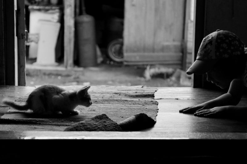 жанр, черно-белое, девочка Деревенское летоphoto preview