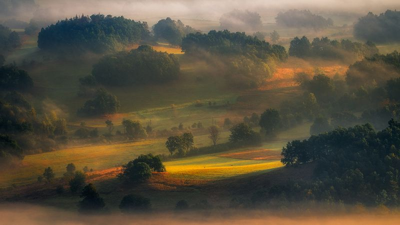 landscape,canon,mist,light,summer Wait for the Sun to Reach the Angle....photo preview