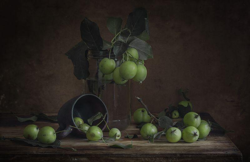 натюрморт,яблоки,зелёные яблоки Зелёные яблокиphoto preview