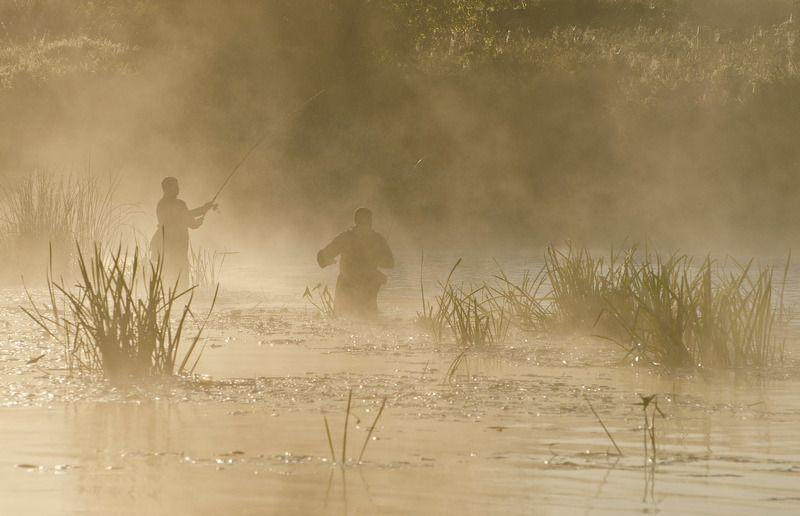 утро, рассвет, туман, рыбаки, спиннингисты Спиннингистыphoto preview
