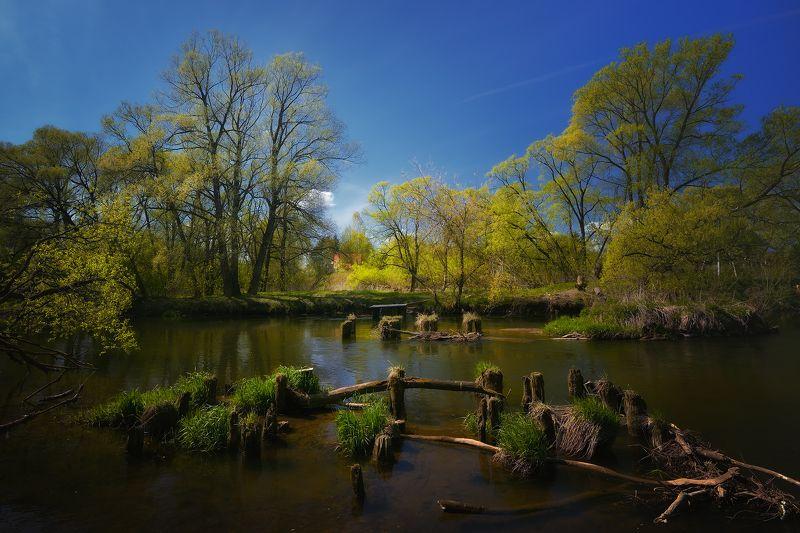 лес, природа, пейзаж, лето, река, вода, течение, выдержка, ручей, подмосковье У старого мостаphoto preview