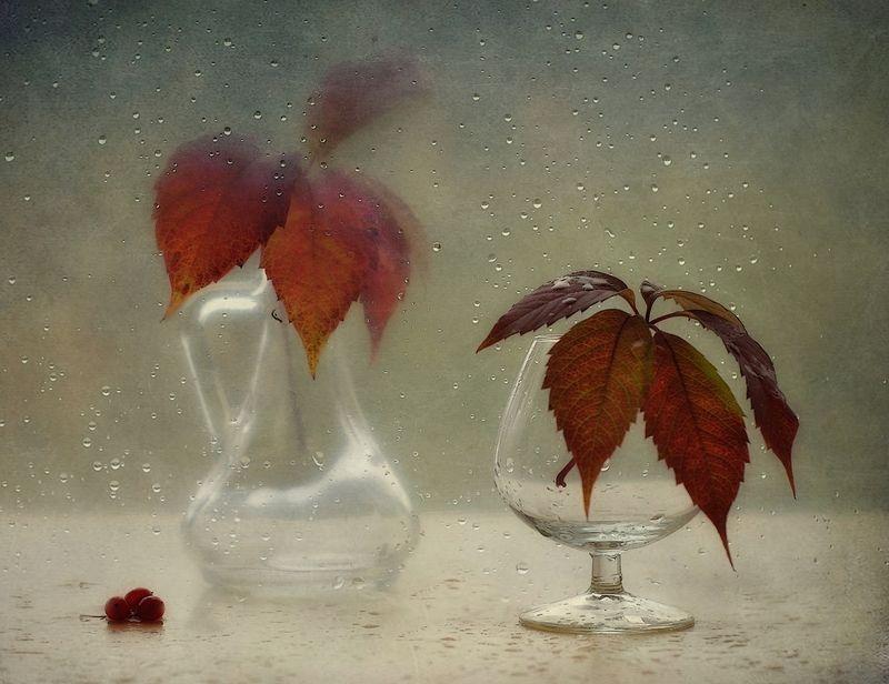 натюрморт,листья,капли,осень ...photo preview