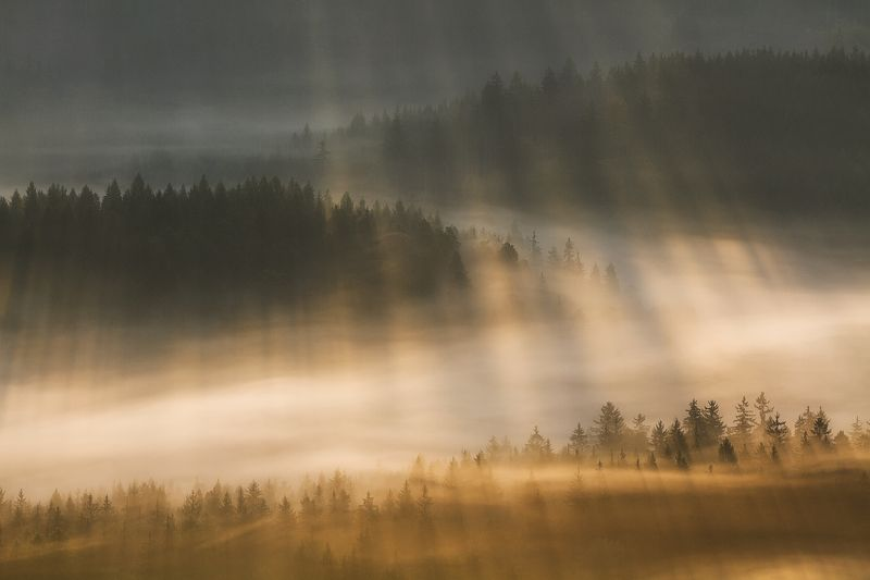 landscape,canon,mist,light,autumn From the Visible World to the Invisible...photo preview
