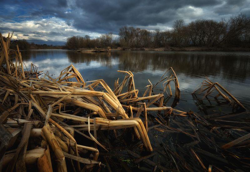 вода, москва-река, подмосковье, весна, пасмурно На Москве рекеphoto preview