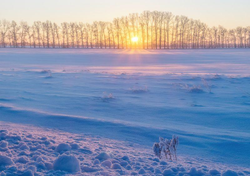 ...Свет зимнего солнца...photo preview