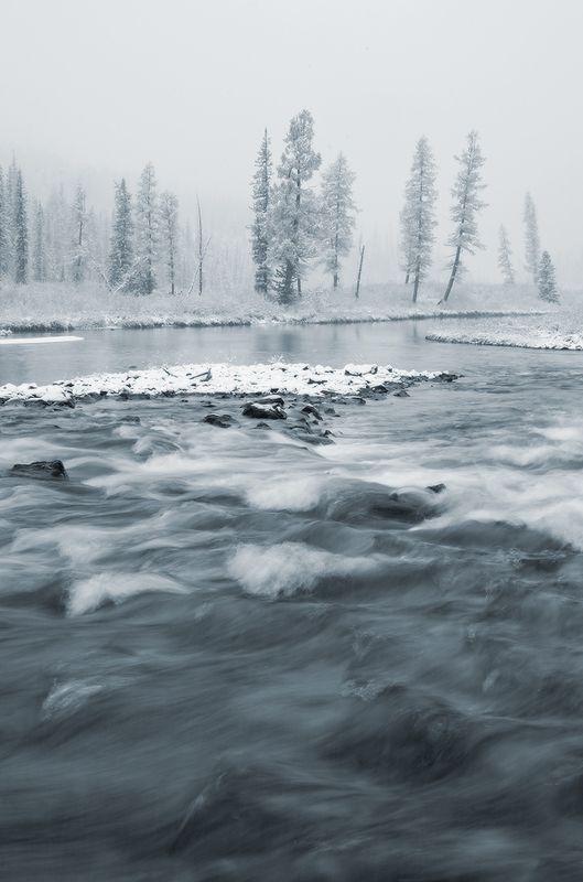 Алтай, р. Шавла на границе зимы (чб)photo preview