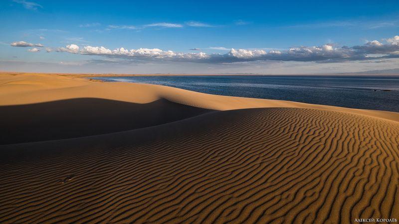 монголия, закат, пустыня, песок, озеро, природа, пейзаж, лето, mongolia, sunset, desert, sand, lake, nature, landscape, summer Золото Монголии 1photo preview
