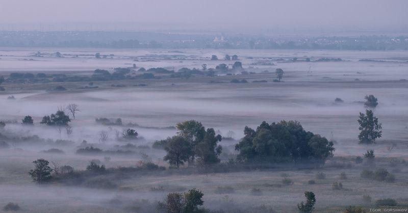 утро,туман,нижняя кама,сумерки,река,природа,деревья,лето,елабуга,татарстан Туманная планетаphoto preview