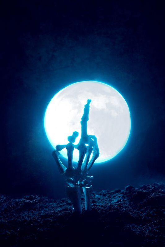 скелет,  луна,  ночь,  земля, рука I\'ll be backphoto preview
