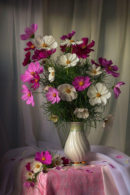 художественное фото,искусство,фотонатюрморт,летние цветы. Нежный букетик космеи.photo preview