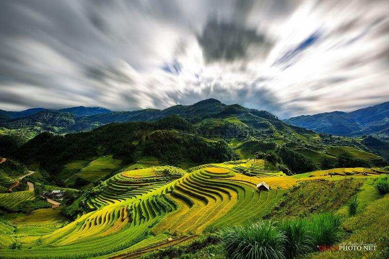 quanphoto, landscape, nature, rice, terraces, farmland, farming, agriculture, highland, plateau, harvest, golden, vietnam Mu Cang Chai Rice Terracesphoto preview