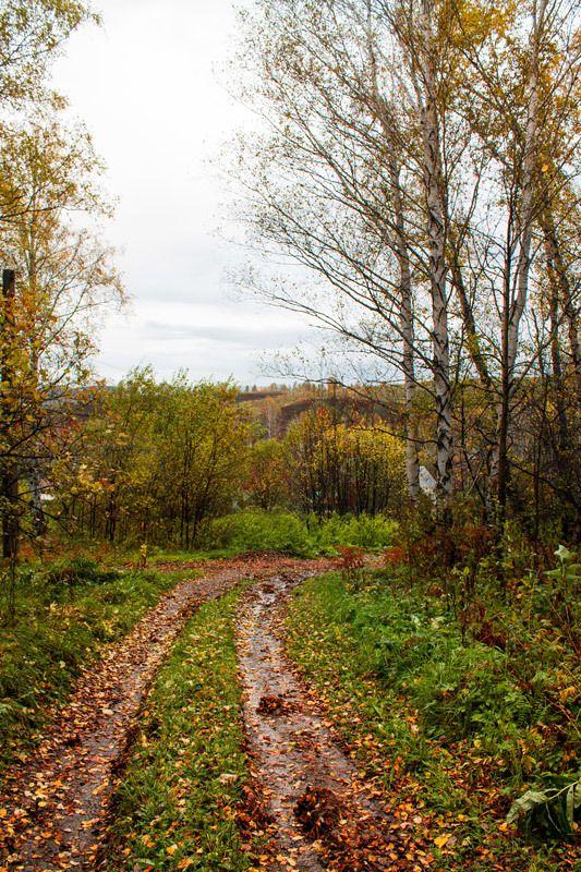 Осень на порогеphoto preview