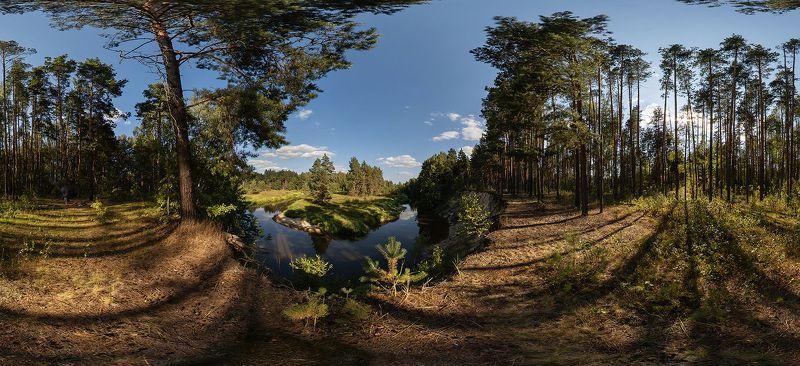 река, лес, лесная река, лето, летняя река, берега, высокий берег, обрыв, сосны, мещёра, рязанская область Ритмичный летний пейзаж с лесной рекойphoto preview