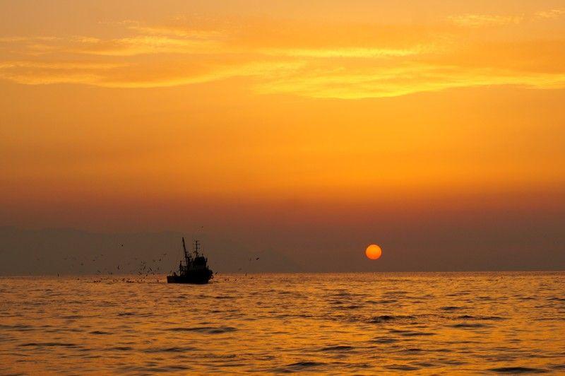 Kuşadası Sunset and fishersphoto preview