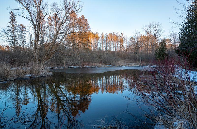 lake, trees, autumn, reflection, ice, озеро, деревья, осень, отражение, лёд Colors of springphoto preview