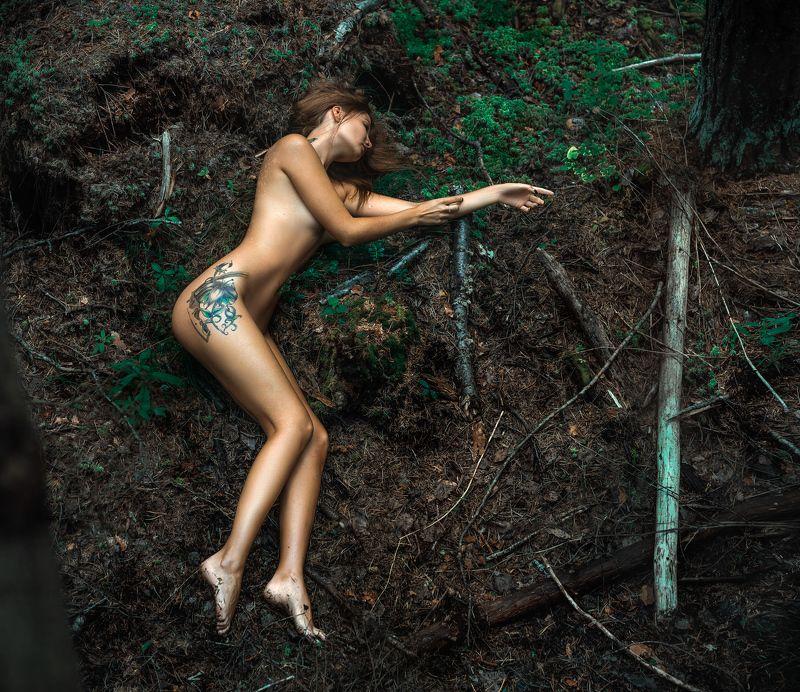 девушка,жанр,портрет,фотография,модель,арт,portrait,photography, middle,nature,soul,свет,girl,canon 85 mm, woman,monochome,ню,гламур Forest Fairy #2photo preview