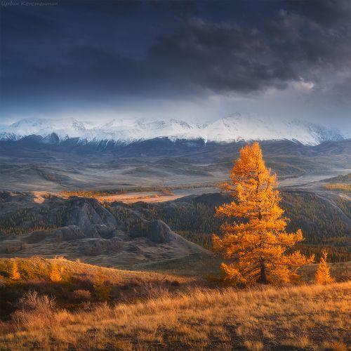 Алтай. Осень в курайской степи.