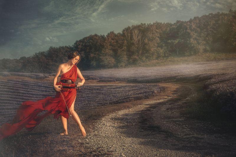 девушка скрипка лаванда поле закат играет дорога Скрипачка (продолжение)photo preview
