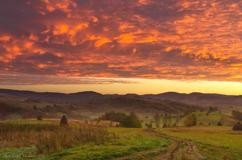 пейзаж, карпаты, осень, красиво, октябрь, горы, листья, деревья, оранжевый Небо Карпатphoto preview