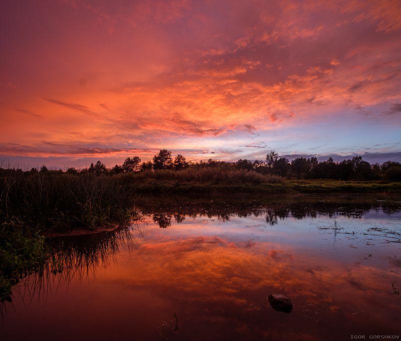 молога,река,закат,пейзаж,природа,небо,тучи,отражения,берег,трава, Закат после дождливого дняphoto preview