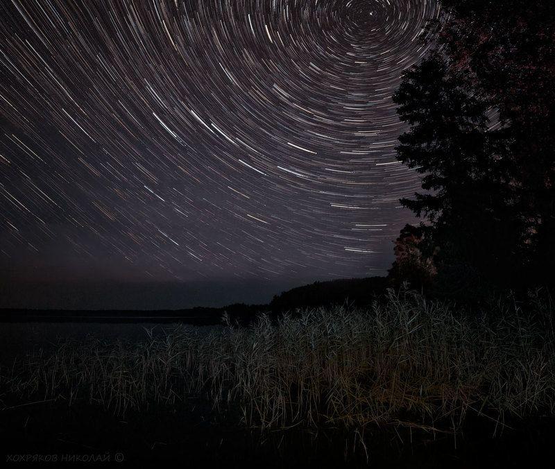 тростники и звёзды...photo preview