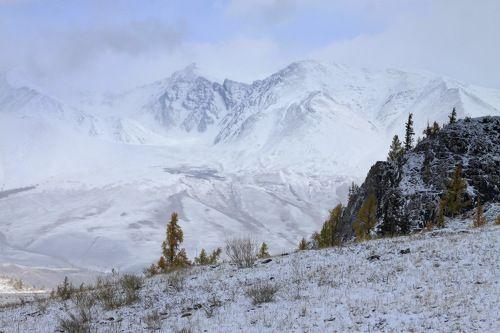 Чуйские Альпы