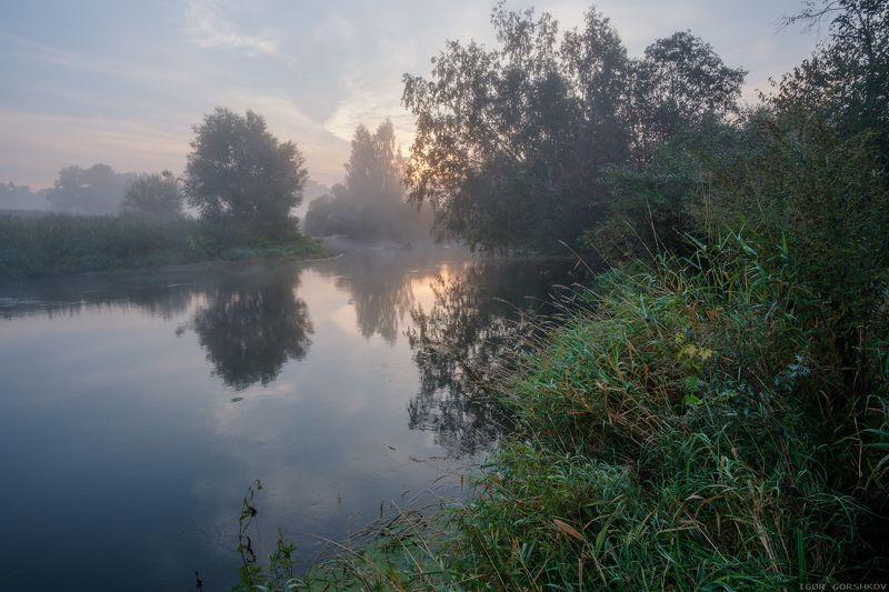 река, утро, рассвет,туман,воря, подмосковье, сентябрь,пейзаж,деревья, природа Сентябрьское утро на рекеphoto preview