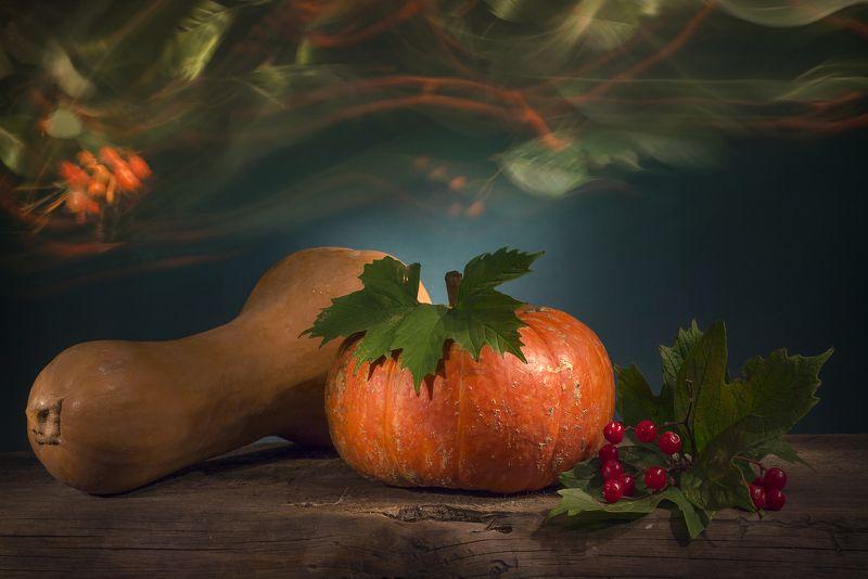 тыквы,осень,калина,световая кисть, натюрморт Мелодия осениphoto preview