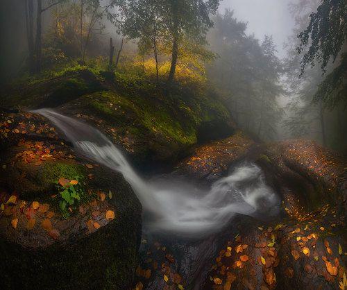 Осень в Болгарии