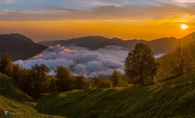абхазия, фототур, путешествие, горы, солнце, лучи, рододендрон, долина реки, ущелье, деревья, лес, Туман в горной долинеphoto preview