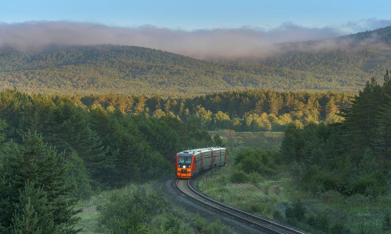 жд, железная дорога, поезд, россия,  пейзаж, skrylov, skrylov_official,  кыштым, челябинская область. кордон липиниха, утро, туман, лето ра2, рельсовый автобус, юужд ***photo preview