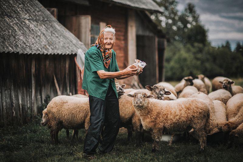 portrait,genreportrait,willagelife,портрет,деревня,овцы,хутор Она и овцыphoto preview