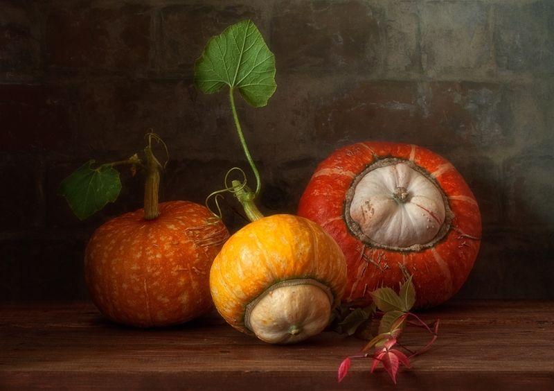 натюрморт,тыквы,осень дары осени ))photo preview