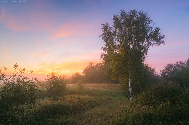 утро, рассвет, природа, пейзаж, туман Осеннее утро.photo preview