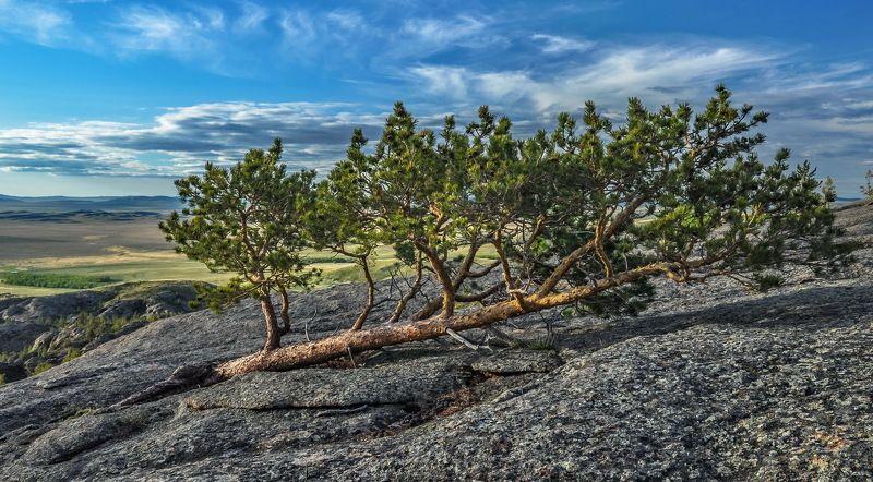 горы Сила  природыphoto preview