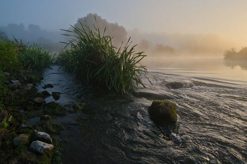 утро, рассвет, пейзаж, река, упа, якшино, перекат На перекатеphoto preview