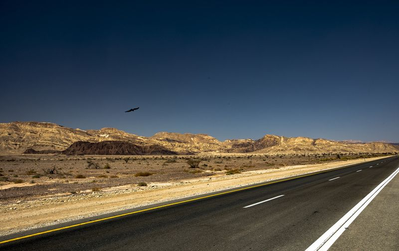 Дорога через пустыню Араваphoto preview