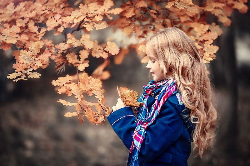 золотая осень сентябрь Вероникаphoto preview