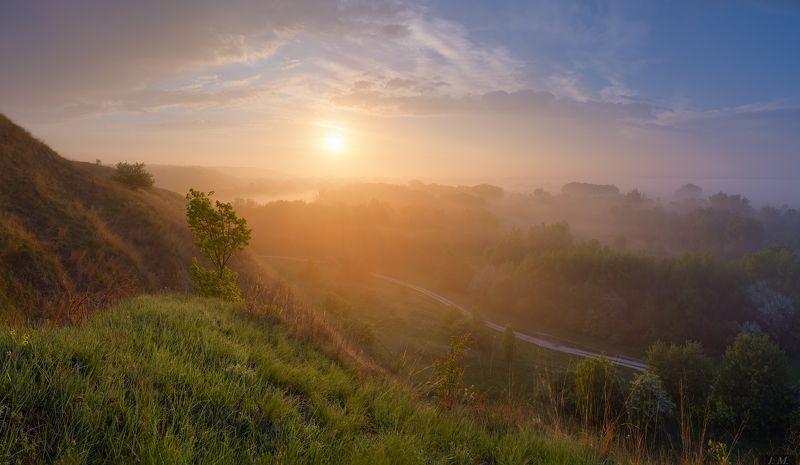 утро, рассвет, солнце, туман, весна, холмы, долина, панорама, свет, золотой, пейзаж, облака, morning, fog, light, colors, golden, sun, misty, valley, grass, hills, foggy, spring, sunrise, landscape, panorama, sunlight, countryroad, clouds Золотой рассветphoto preview