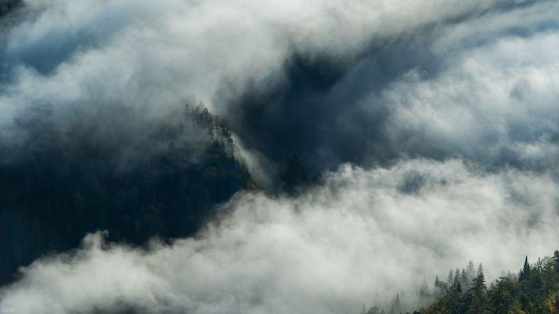 biocity, nature, dragon, lair, природа, пейзаж, дракон, логово дракона. сонphoto preview