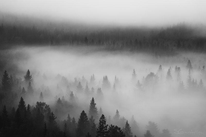 Средний Урал, Урал, Теплая гора, Тёплая гора Туман в лесуphoto preview